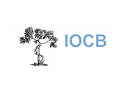 Iocb Ortopedia