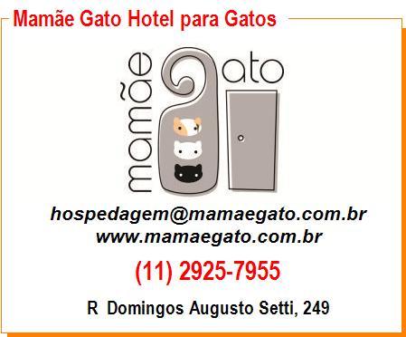 Mamãe Gato Hotel para Gatos