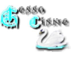 Gesso Cisne
